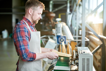 Fototapeta Side view portrait of modern bearded man wearing apron packing freshly roasted coffee beans in craft paper bags while working in artisan roastery house, copy space obraz