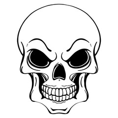 Black and white illustration of human skull in ink hand drawn style.