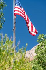 American flag framed by National park landscape vegetation and mountain