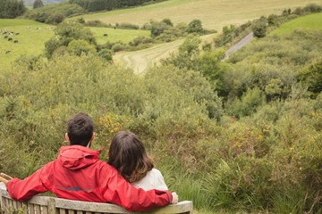 Rear view of couple sitting on bench in forest