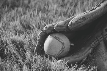 Baseball in glove for sport game, laying in grass.
