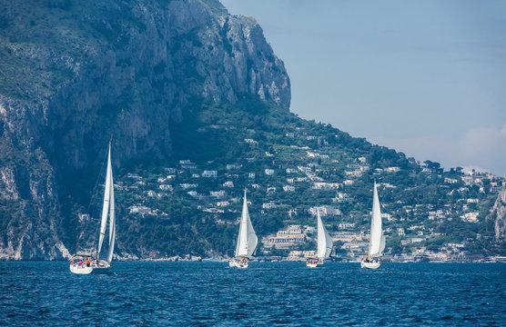 Fleet of sailing boats