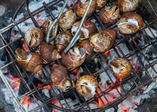 Snails are roasting on the grill. Grilling snails on grate over charcoal.