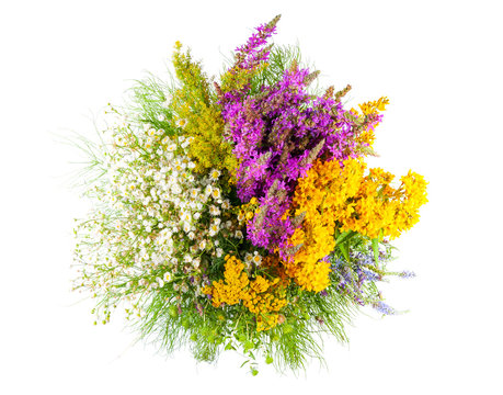 Bouquet of wildflowers isolated on white background, top view