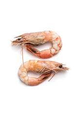 Two boiled shrimps close-up. Isolated on white background..