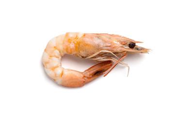 Whole boiled shrimp close-up. Isolated on white background..