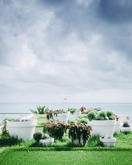 Ocean and Beach View with Succulent Plants under a cloudy sky