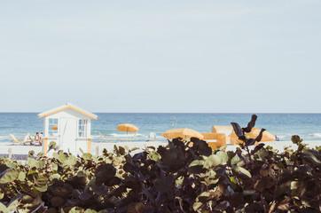 Miami Beach Ocean View with Orange Umbrellas