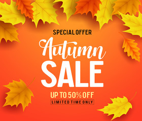 Autumn sale vector banner background with fall leaves elements, autumn typography and discount text in orange background. Vector illustration.