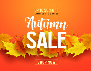 Autumn sale vector banner design with maple leaves elements in orange background for fall season shopping discount promotion. Vector illustration.