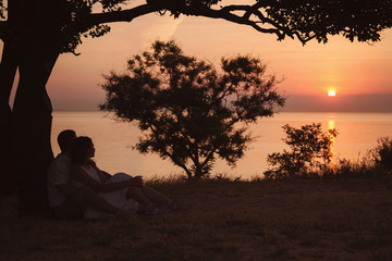 Beautiful scenery at dawn. A beautiful tree in the shape of a heart symbol. A loving couple sits hugging under a tree.