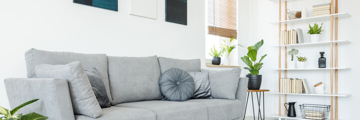 Panorama of pillows on a comfortable, gray sofa and a scandi style, wooden bookcase by a white wall in a minimalist living room interior