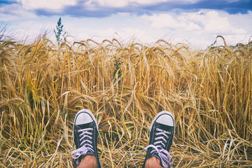Happy summer. Man wearing black and white sneakers and laying in golden barley field.