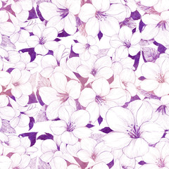 Tropical flowers. Graphic arts. Decorative composition - flowers on a white background. Use printed materials, signs, items, websites, maps, posters, postcards, packaging.Seamless pattern.