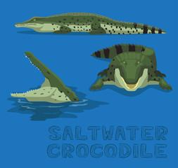 Saltwater Crocodile Cartoon Vector Illustration
