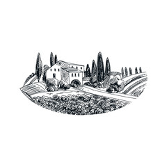 vector hand drawn vineyard  Illustration