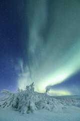 Aurora Borealis in beautiful nature