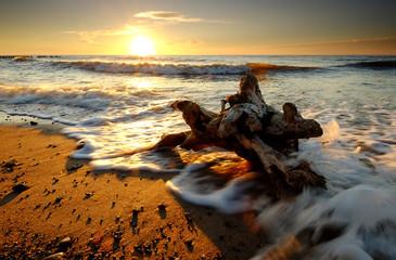 Fototapeta Polskie wybrzeże Bałtyku o zachodzie słońca obraz