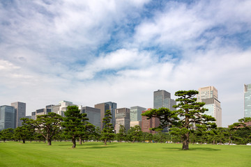 Tokyo cityscape of palace gardens and Marunouchi district