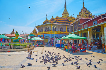 The pigeons at Buddhist Temple on Inle Lake, Myanmar