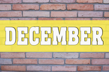 December On red bricks Texture