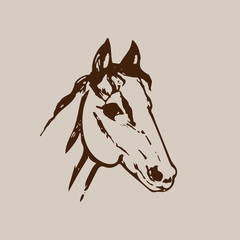 Hand drawn sketch of horse head. Brown ink line drawing isolated on beige background. Mustang portrait. Vector animal illustration.