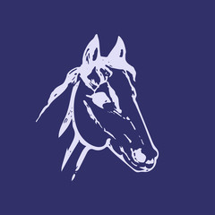 Hand drawn sketch of horse head. Lline drawing. Blue colors. Mustang portrait. Vector animal illustration.