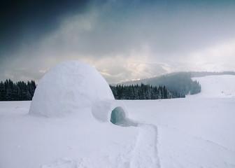 snow shelter (igloo)