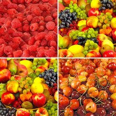 Fototapete -  image of many fruits and berries close-up