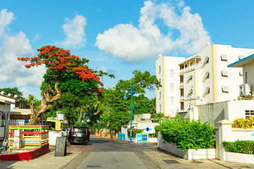 Colourful beachfront street with resorts in Barbados