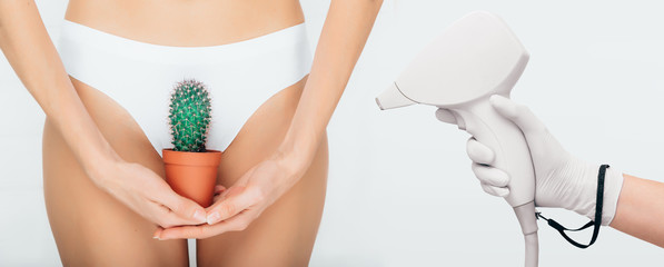 concept bikini laser epilation , woman holding a cactus on a background of white panties, close-up, depilation of a bikini zone
