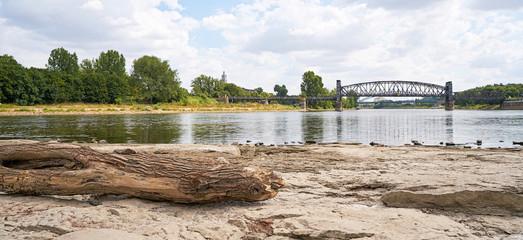 Ausgetrocknetes Flussbett der Elbe bei Magdeburg mit dem durch Trockenheit freigelegten Domfelsen