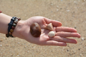 Hand with stones and shell