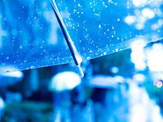 Fototapete - 雨の丸の内