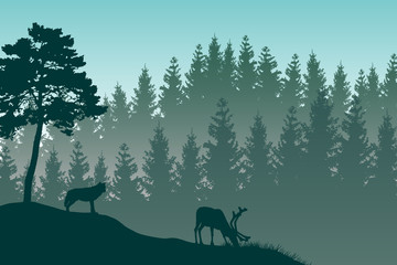 Vector landscape with detailed green layered misty forest and a wolf watching a grazing deer.