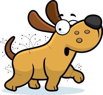 Cartoon Dog With Fleas