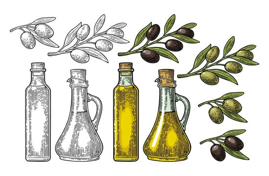 Bottle glass oil with cork stopper and branch olive with leaves