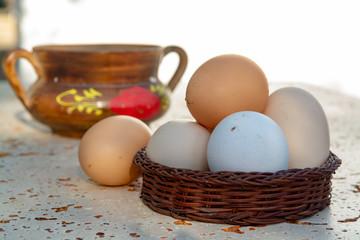 Fresh organic chicken eggs from cage free bio farm