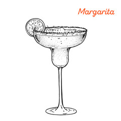 Margarita cocktail illustration. Alcoholic cocktails hand drawn vector illustration. Sketch style.