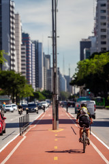 Bicycle lane in the middle of the main avenue in São Paulo
