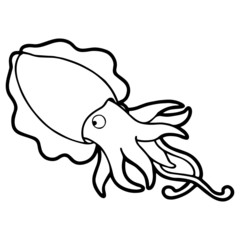 Cute squid cartoon illustration isolated on white background for children color book