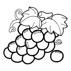 Cute grape cartoon illustration isolated on white background for children color book