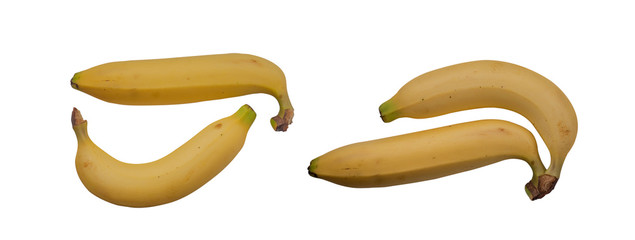 Cavendish banana (Kluai Hom thong)