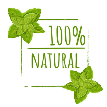 100 natural logo design. Green vector eco stamp. Color icon with leaves. Flat vector illustration. Isolated on white background