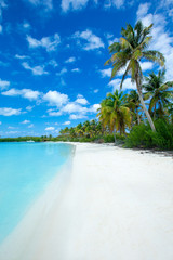 Obraz beach and tropical sea - fototapety do salonu