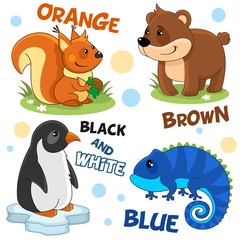 Set of cartoon illustrations of wild animals, birds and reptiles for children and design, orange squirrel with walnut, brown bear, black and white penguin on the ice floe and blue iguana.