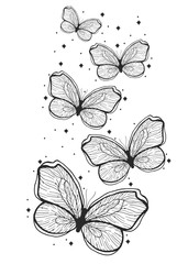 Beauty butterfly hand drawn illustration. Decorative vintage style. Vector doodle element.