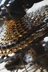 Zilina, Slovakia; 10-Jun-2018. 12 speed bicycle MTB chain casette - gold. Slovakia