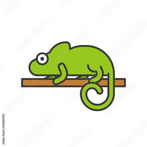d9e94fd3198e9 chameleon lizard
