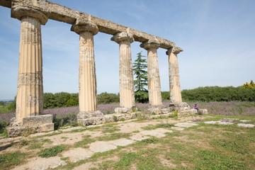 Palatine Tables, Metaponto